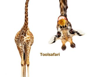 Toolsafari